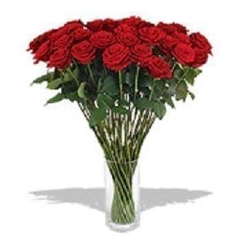 50 Luxury Red Roses by Precious Petals Florists