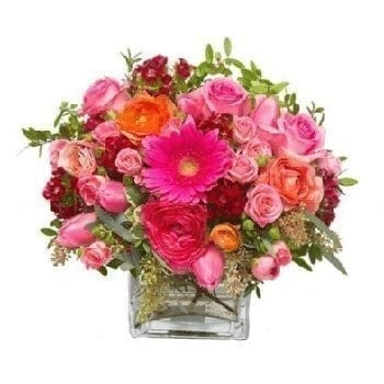Pink Wonder by Precious Petals Florists