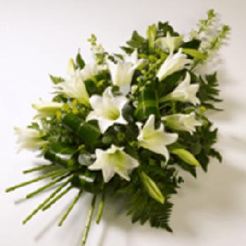 Purity Sympathy Spray by Precious Petals Flowers