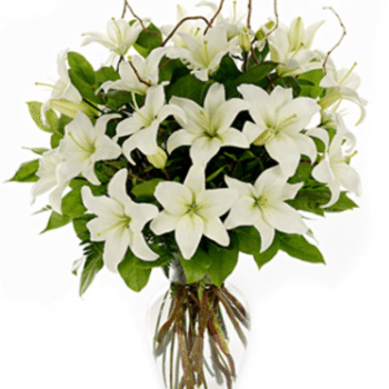 Simple Delight by Precious Petals Florists