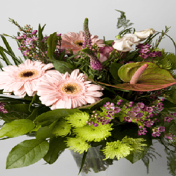 The Vibrant Mix by Precious Petals Florists