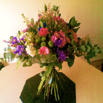Timeless by Precious Petals Florists