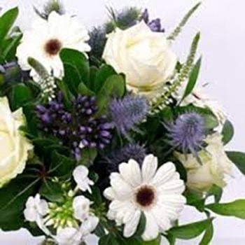 Florists Choice Of The Day - Baby Boy | Precious Petals Florists