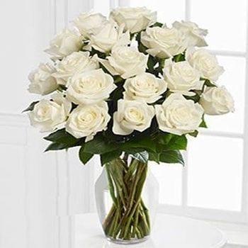 12 Avalanche White Roses - Precious Petals Florists