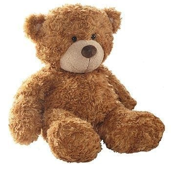 X-Large Brown Teddy Bear - Precious Petals Florists