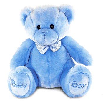 Baby Boy Teddy Bear - Precious Petals Florists