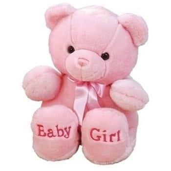Get Your Baby Girl Bear at Precious Petals Flower Shop in Dublin