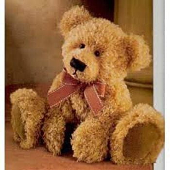 Teddy Bear - Precious Petals Florists