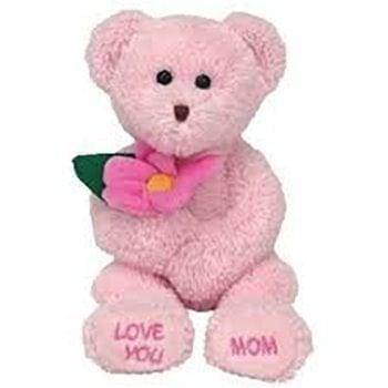 Get Your Mothers Day Bear at Precious Petals Flower Shop in Dublin