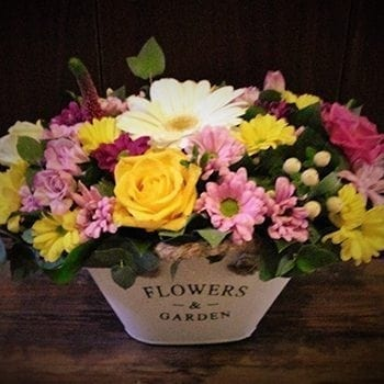 Get Your Meadow Flower Arrangement at Precious Petals Flower Shop in Dublin