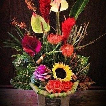 Tropics - Precious Petals Florists