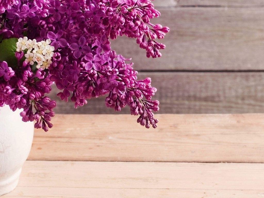 Precious Petals Florists | Flower Delivery Dublin | Florists Dublin