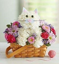 Get Your A Cats Tale Flowers Arrangements at Precious Petals Flower Shop in Dublin